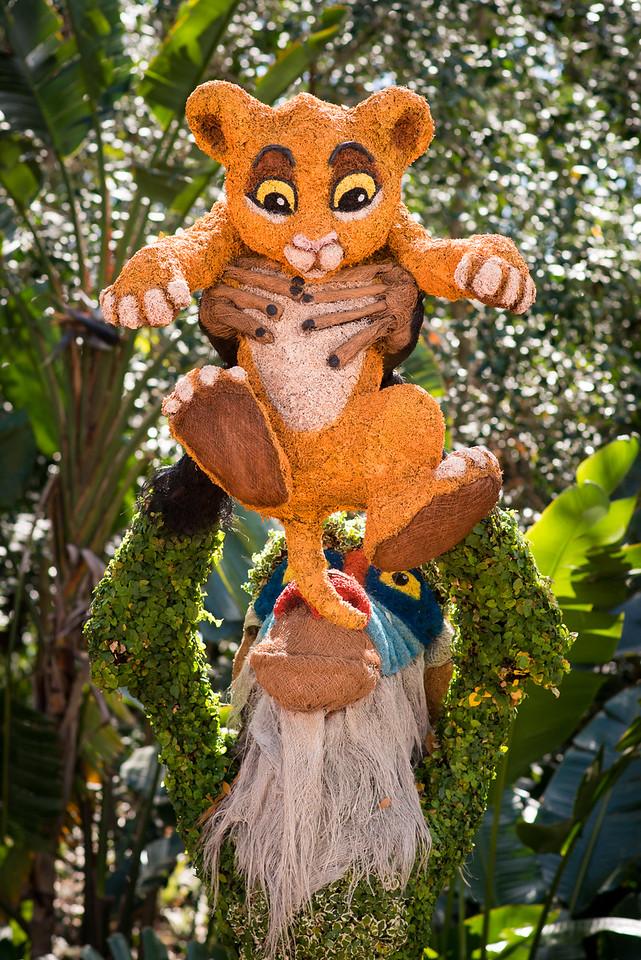 Simba & Rafiki Topiaries - Epcot Flower & Garden Festival 2016