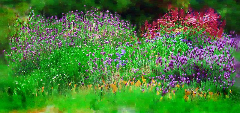 Summer flower bed
