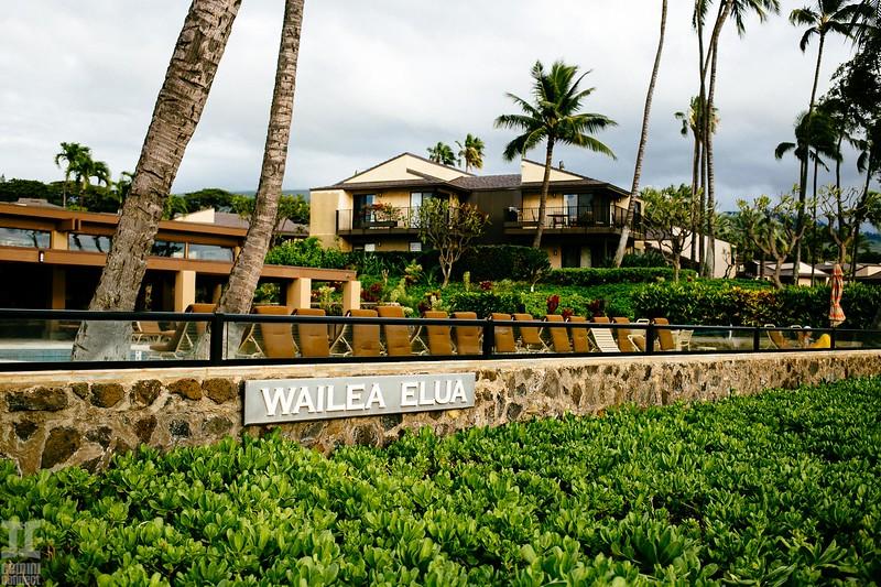 Wailea-2.jpg