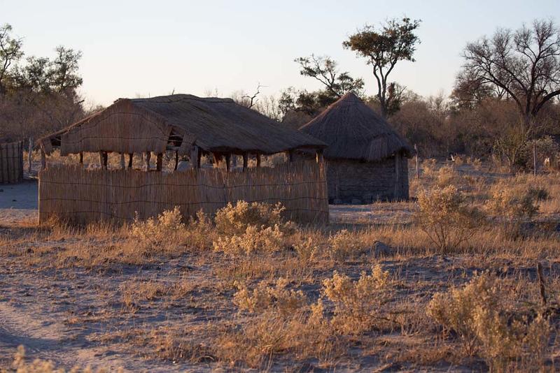 Africa1356.jpg
