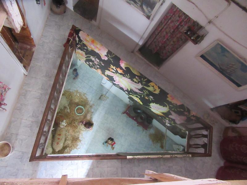 028_Alger. La Casbah. Maison de 3-4 familles. Animaux au 1er étage.JPG