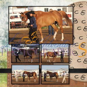Lydia Althoff 2012 Horse Shows