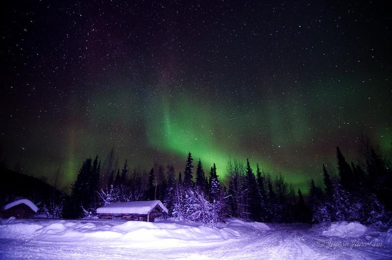 USA-Alaska-Wiseman-Aurora-2923.jpg