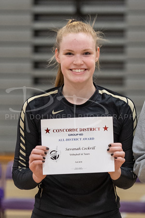 2018 10/25 Concorde District Volleyball First Team