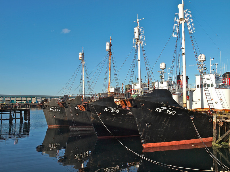 Fishing boats moored at Reykjavik. Tough exposing the black hulls against a bright sky.