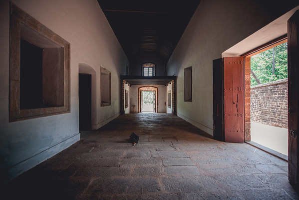 India | Old Goa