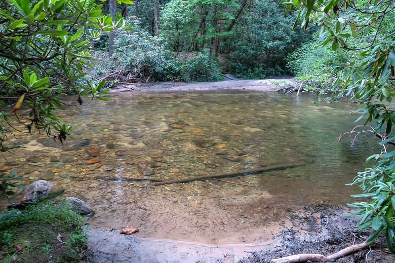 Bradley Creek Trail @ South Fork Crossing #1/#5 -- 2,390'