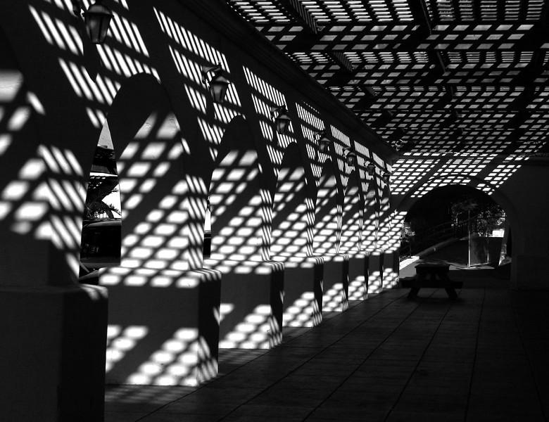 6759 SR Shadows BW.jpg