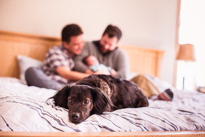 George + Barclay | Family Portraits
