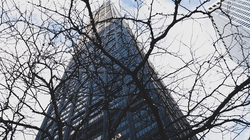 ChicagoDec2018-21.jpg