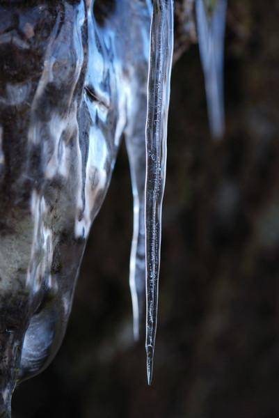 Ice along the Kamiyama hiking trail