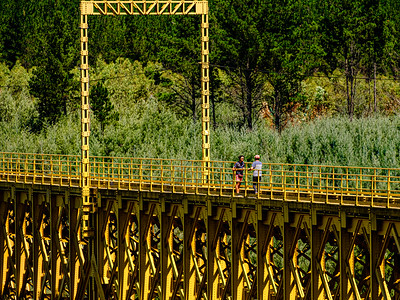 Puente Malleco y su vecindad