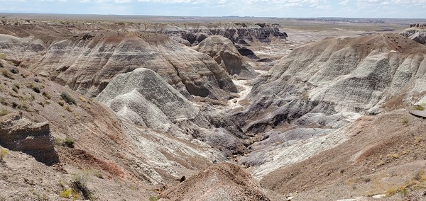 2019 Petrified Forest & Painted Desert