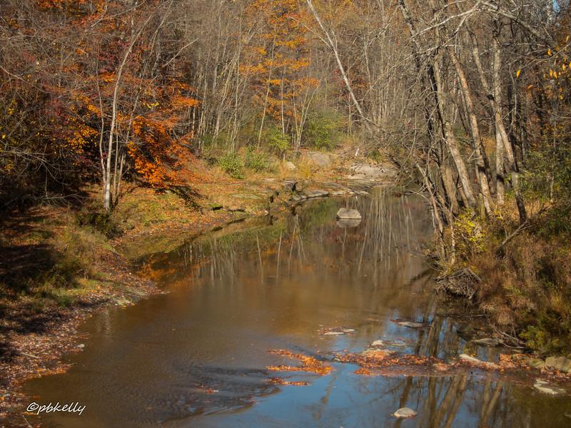 Black River 110516-1.jpg