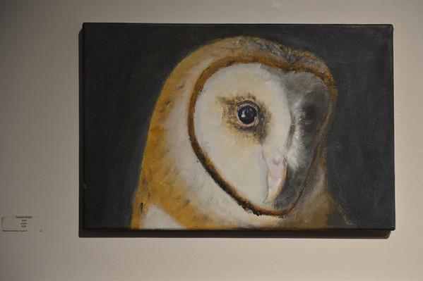 2014-02-28 AVA Art Gallery Opening