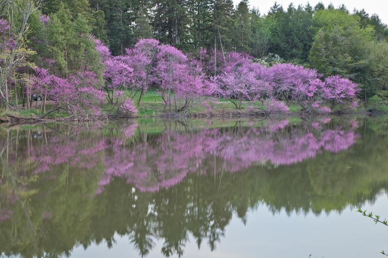 Spring13-0331.jpg