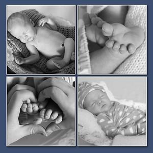 Vezzetti newborn