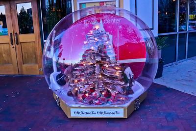 Virginia Beach Town Center Christmas