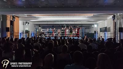 Casino Fight Night Pfäffikon 2017