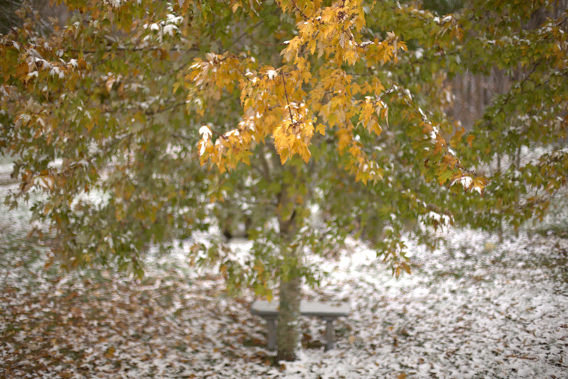 (RAW) 11.16.14 - Rare Snowfall In Fall