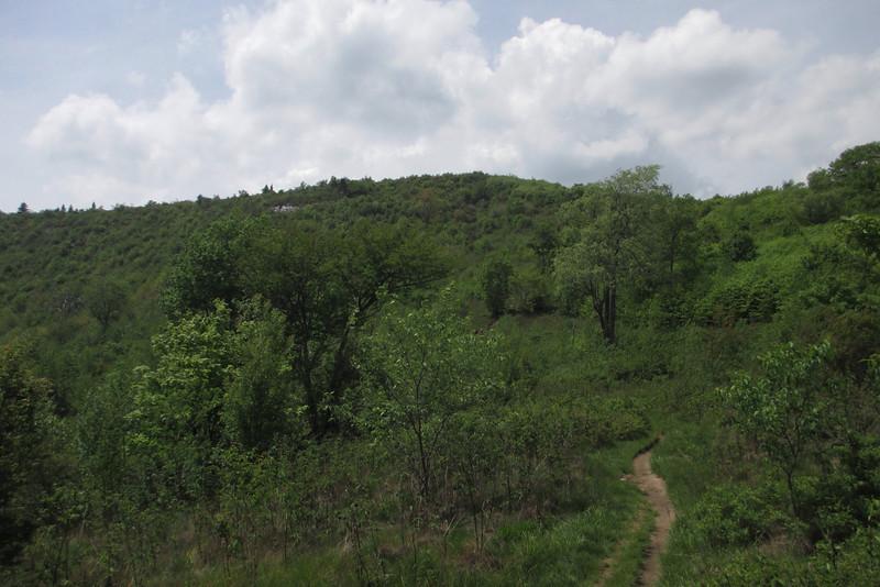 Graveyard Ridge Connector Trail (5120')