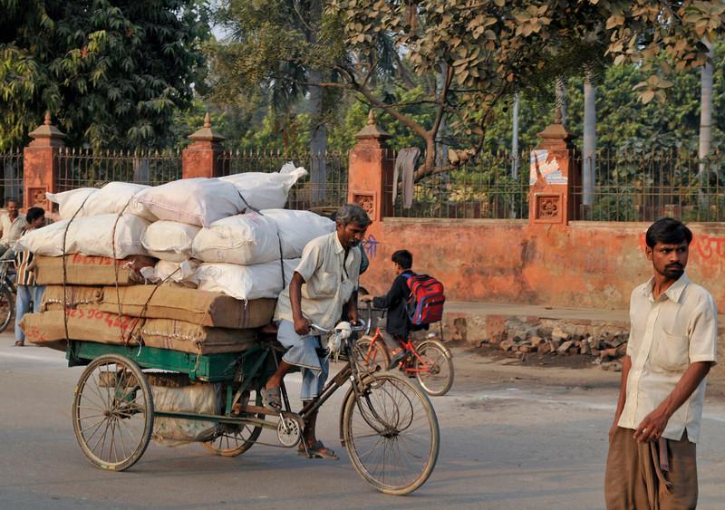 _DSC3372_rickshaw.jpg