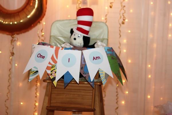 Genevieve's Dr. Seuss First Birthday
