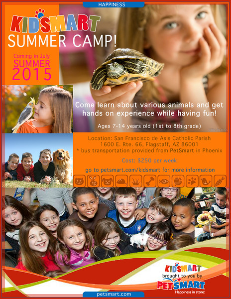 KIDSMART summer camp flyer.jpg