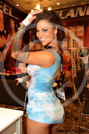 AVN / AEE Expo 2014