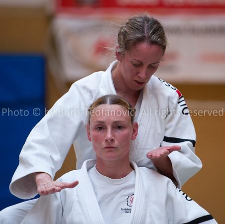 Deutsche Kata Meisterschaften 2013 Maintal