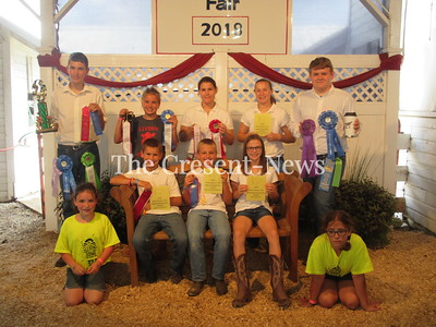 08-15-18 NEWS Henry County Fair dairy