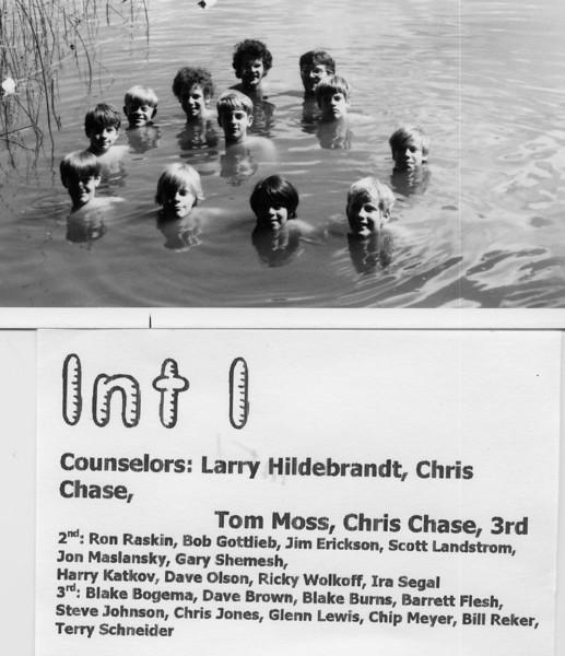1971 Int 1