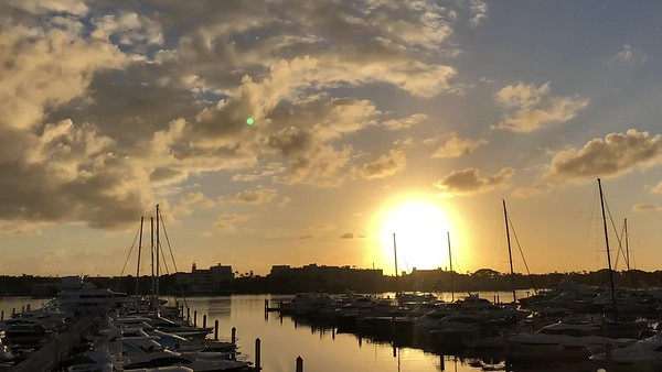 Palm Harbor Marina Video December 2017
