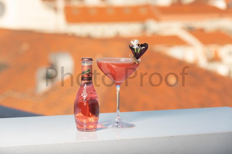 BIRDSONG Schweppes Cocktails 205.jpg