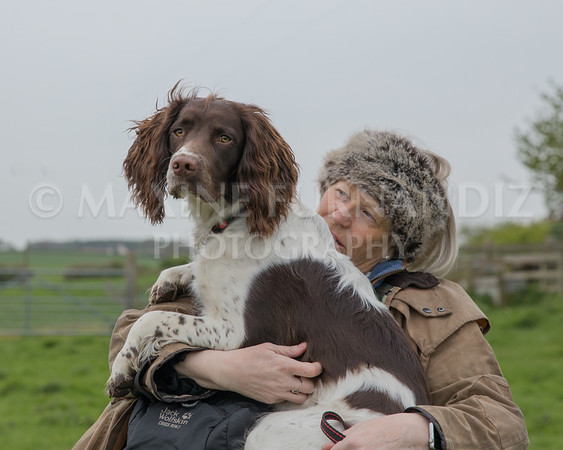 COCKER & SPANIEL GROUP LESSONS