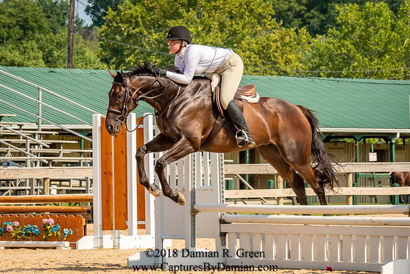BEST Horse Show (8/4/18 - 8/5/18)