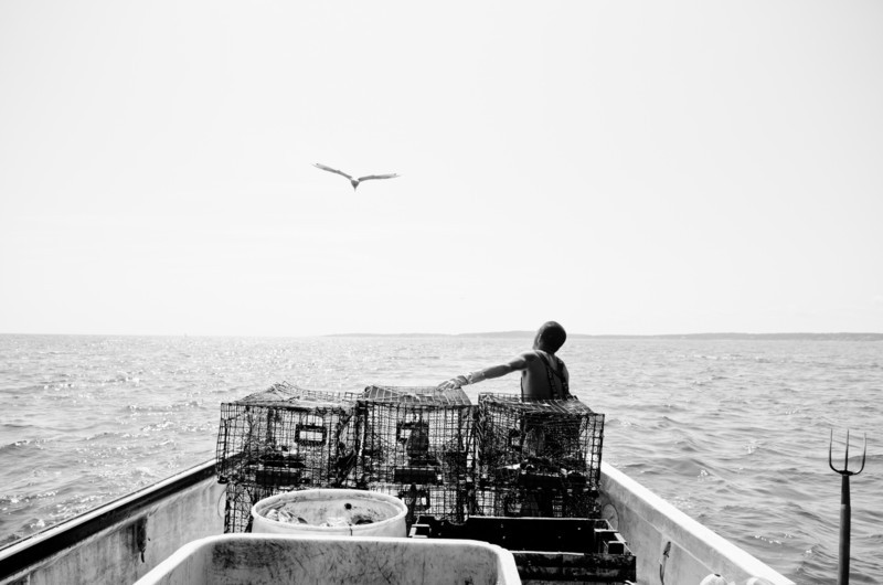 56. Lobstering, Casco Bay, Maine with Jim Buxton, August 2013.
