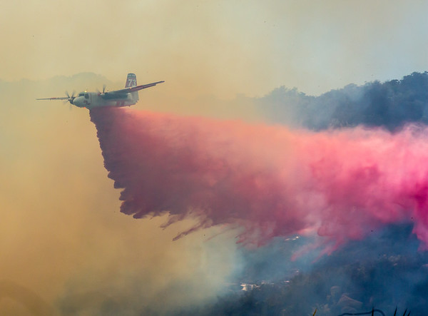 Pala Fire