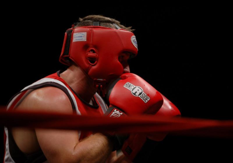 boxer13.JPG