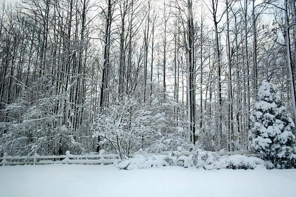 Snow Storm, February 2006