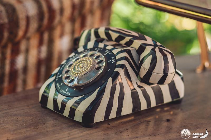 BananaCamPhoto-69.jpg