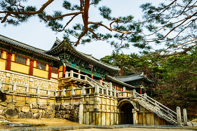 Road Trip Through Korea