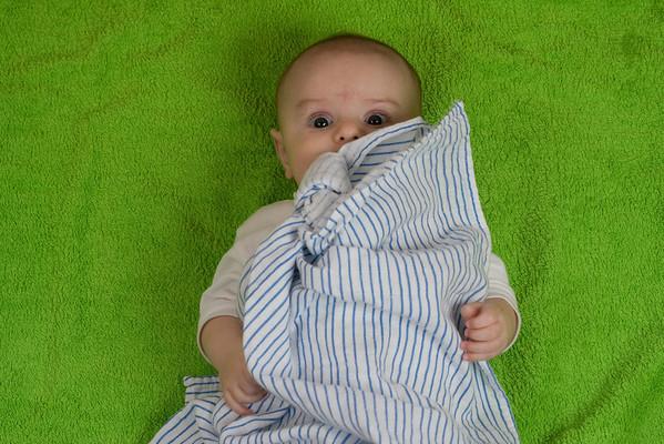 Petřík na ručníku