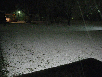 Snow! Dec. 10th 2008