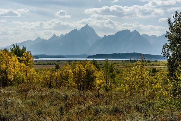 Upper Teton View
