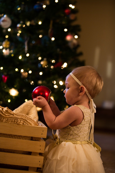 Leah Marie's First Christms 2018 (116).jpg