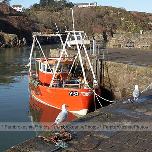 Fishguard