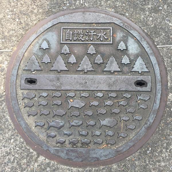 Manhole cover,  Taipei, Taiwan
