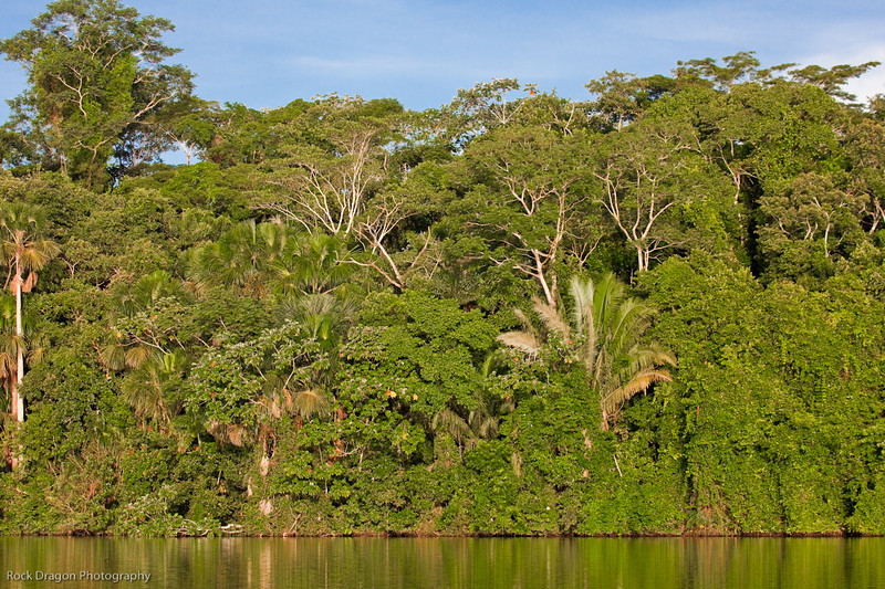 Lake Sandoval and the Peruvian rain forest.