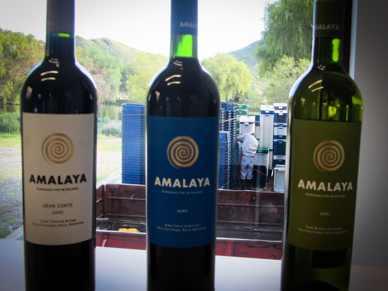 Cafayate 201203 Amalaya Wine (21g).jpg